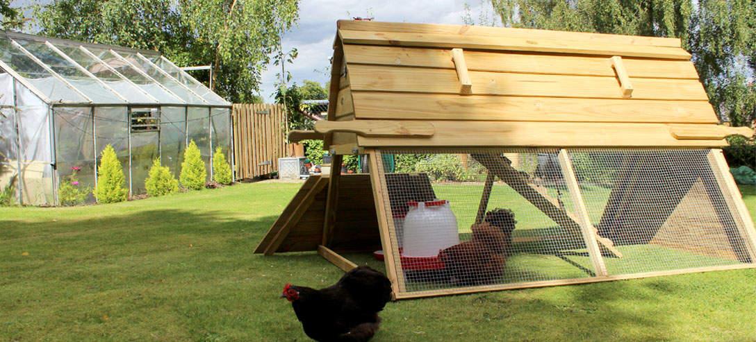 Boughton hønsehuset har en dør, der lader hønsene komme ud og gå i det fri
