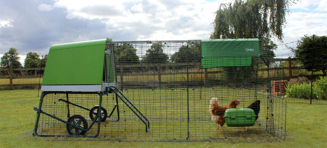 The Eglu Go UP can be extended to give hens extra space