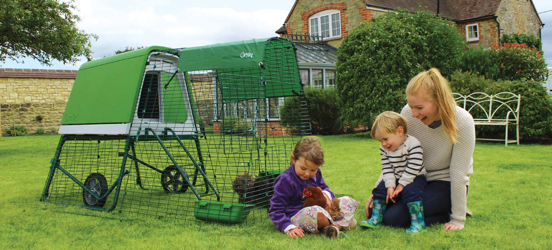 The Eglu Go Up Chicken Coop makes backyard chicken keeping fun for the whole family