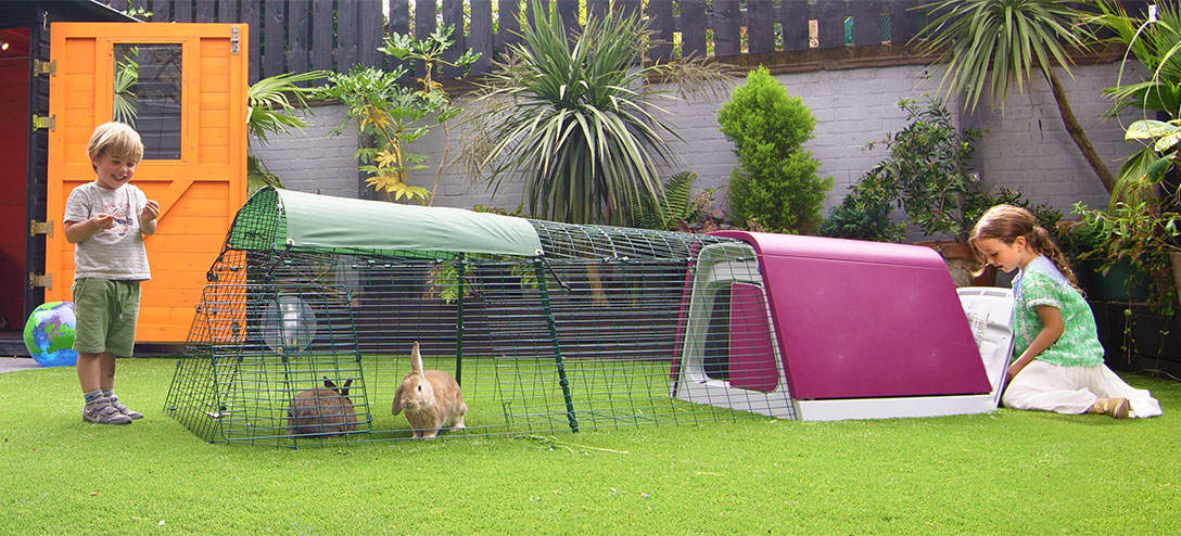 hutch story ebay trixie rabbit itm new natura hutches