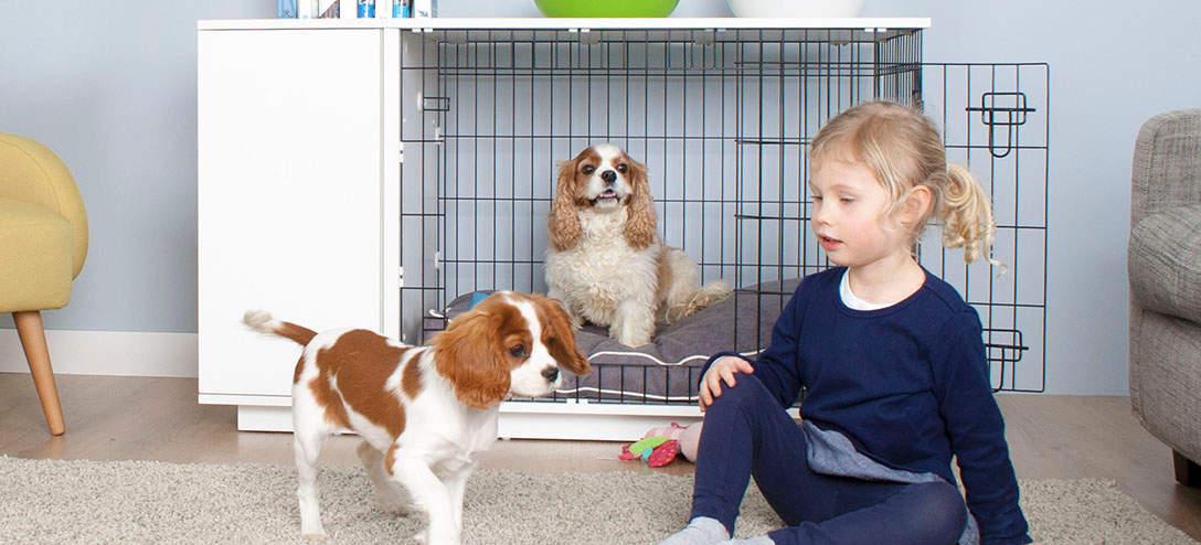 Laat uw honden deel uitmaken van uw gezin
