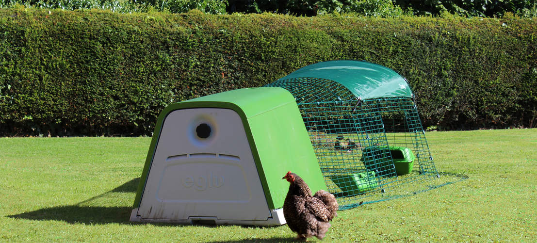 Thanks to it's twin wall insulation the Eglu Go chicken coop keeps your hens cool in the summer and warm in the winter