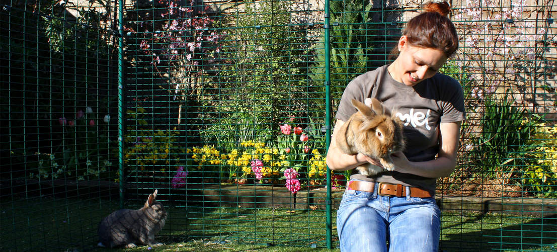 An Outdoor Rabbit Run provides your pet bunnies with lots of safe outdoor exercise space.