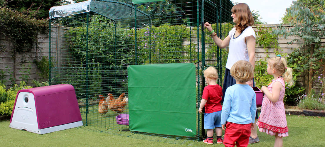 6ft x 9ft x 6ft Walk in Chicken Run attached to Eglu Go Chicken Coop - family spending time with chickens
