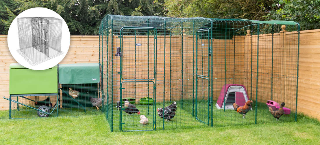 You can even partition your Walk in Run, great if you are breeding or are introducing new chickens.