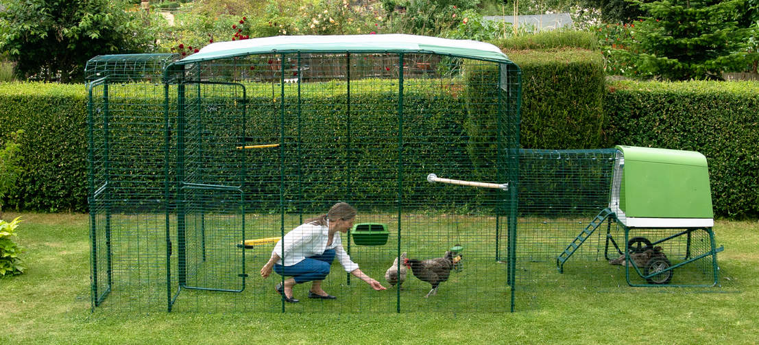 The secure run can be extended at any time, or you can easily connect it to a larger Walk In Run to create the ultimate chicken area.