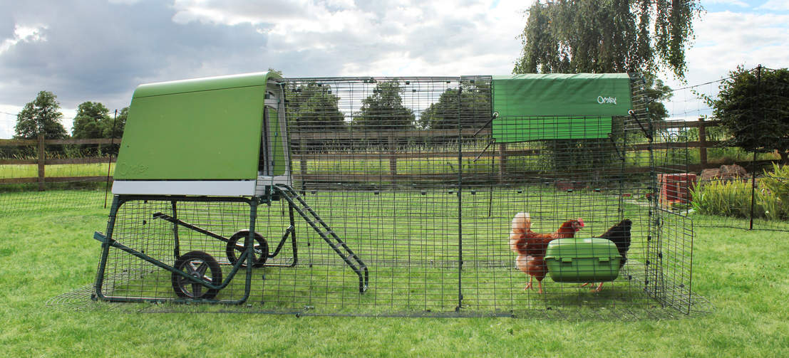 The Eglu Go UP's heavy duty steel run, in an attractive dark green, protects your hens and blends seamlessly in your backyard.