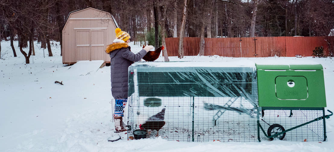 The Eglu Cube chicken coop features twin wall insulation to keep your hens warm in winter