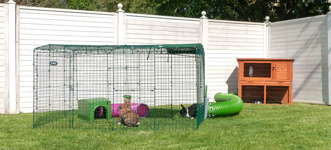 Hands-Free Rabbit Transfers! Connect your hutch to a Zippi Run and give your pet bunnies 24/7 access to a large, secure play space.