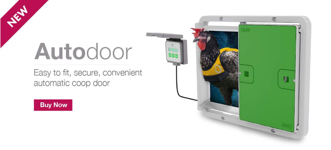 Beautifully Designed Pet Housing