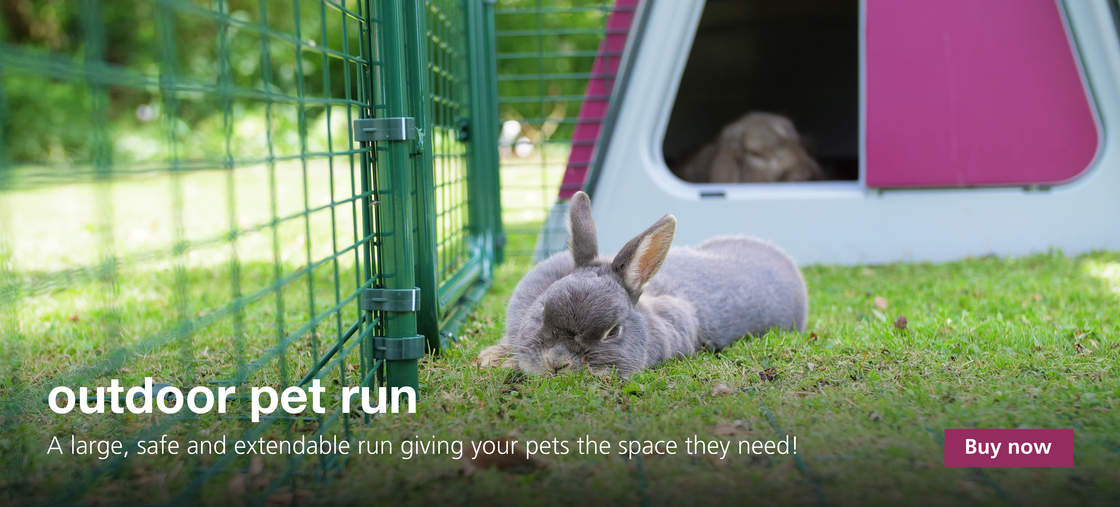Chicken Coops | Chicken Houses | Cat Enclosures | Rabbit Hutches ...