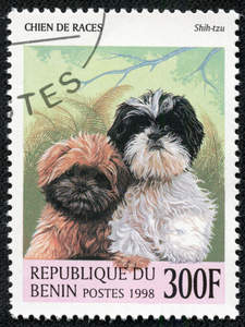 Two Shih Tzu's on a West African stamp