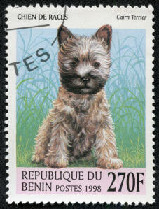 A Cairn Terrier on a West African stamp