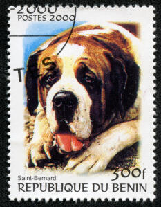 A Saint Bernard on a West African stamp 2