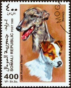 A Jack Russell Terrier and a Chortaj on an African stamp