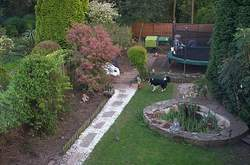 Garden overview complete with chickens, Dog & children.
