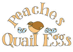 Come & Meet Our Quails!