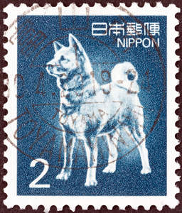 A Japanese Spitz on a Japanese stamp