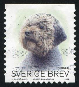 A Lagotto Romagnolo stamp