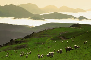 The incredible Pyrenean Mountains