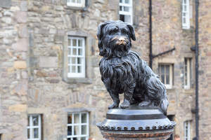 Greyfriars Bobby Statue of a loyal Skye Terrier who remained by his master's grave for fourteen years