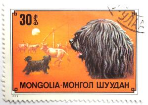 A Puli on a Mongolian stamp