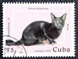 a stamp from cuba with a korat cat printed on it