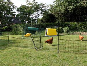Omlet Hühnerzaun - 32 Meter - mit Tor und stabilen Erdspießen