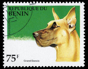 A Great Dane on a West African stamp