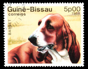 A Basset Hound on a West African stamp