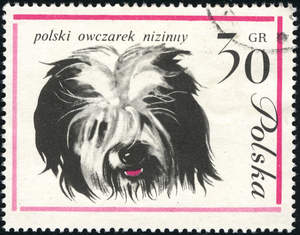 A Polish Lowland Sheepdog on a Polish stamp