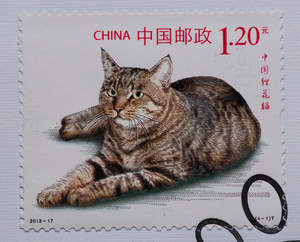 A stamp from china with a dragon li cat printed on it
