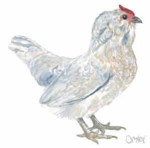 A beautiful painting of a lavender quail female Barbu DAnvers