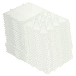 Egg Boxes - 20 scatole per uova di quaglia