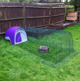 Purple Rabbit Eglu by Hannah