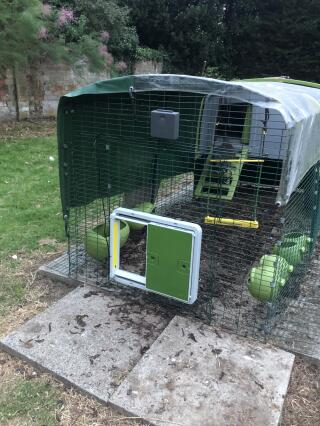Easy to install and chickens used it straight away, brilliant product!