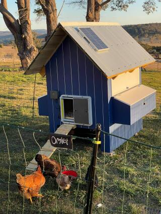 Thanks I let for designing a adjustable fence and automatic coop door with interior light for my chicken family