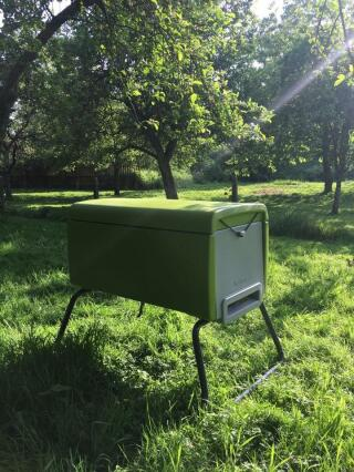 Beehaus in our orchard.