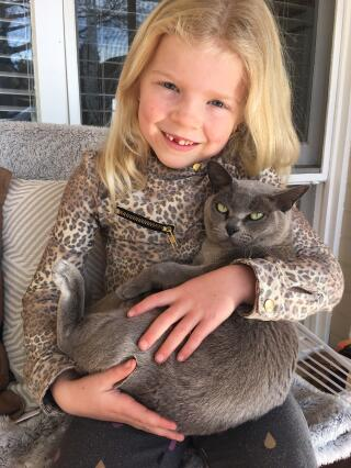 Burmese cats are great with kids.