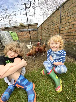 Boys and their chickens!
