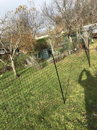 Extension du parc de promenade des poules avec le filet de 21 M