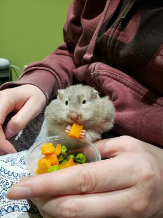 Enjoying her peas and carrots
