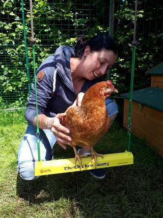 Huhn Josefa testet die Hühnerschaukel