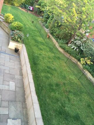 32m Omlet Fencing - chicken corridor around the garden