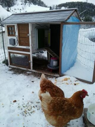 Porte automatique sous la neige - ça marche!