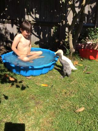 Oi that's our paddling pool
