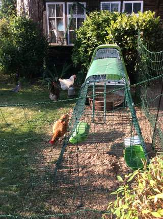 My girls love the extra space thanks to the Omlet netting