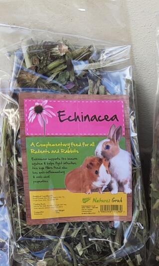 Tasty echinacea