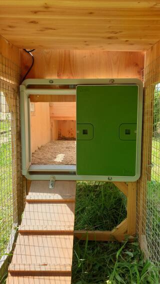 Porte sur poulailler bois extérieur