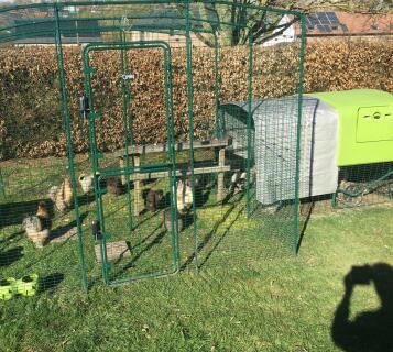 Walk in Chicken run 3x3x2m